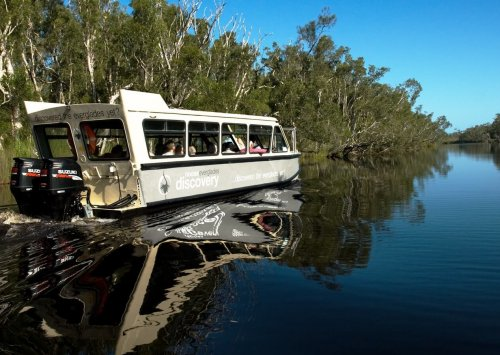 Noosa Everglades Discovery Tours